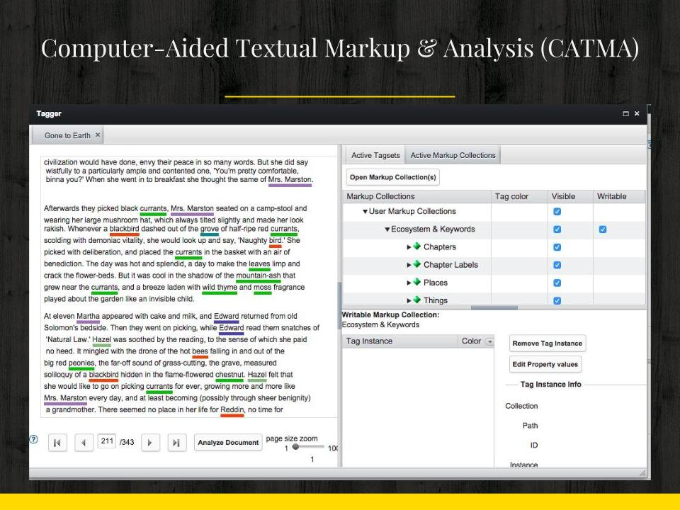 Screen Shot of CATMA tool